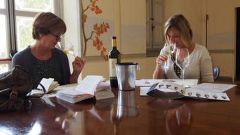 Annemie van Rijswijk en Yvonne Nieuwenhuijs - Giotto Cultuurprojecten