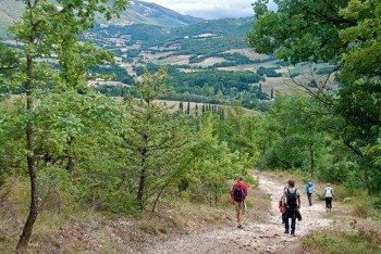 De Cammino – Op weg naar je bestemming