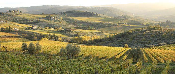 Het goede leven proeven in Umbrie - Giotto Cultuurprojecten