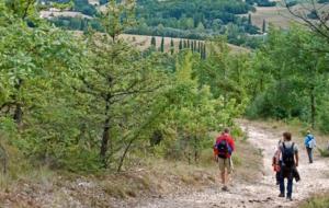De Cammino in Umbrië – Wandelen, rust en ruimte